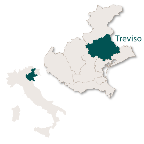 Treviso Province